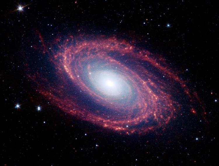 Університетська олімпіада з астрономії та астрофізики: вітаємо переможців