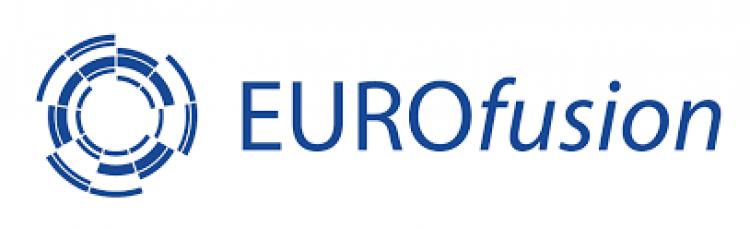 Декан фізико-технічного факультету, член-кореспондент НАНУ Ігор Гірка взяв участь у роботі експертної ради європейської асоціації EUROfusion